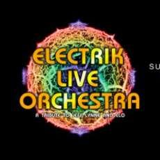 Electrik-live-orchestra-1581161318